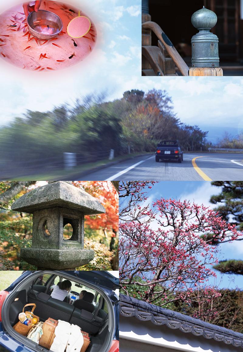 奈良へ自家用車で来ませんか